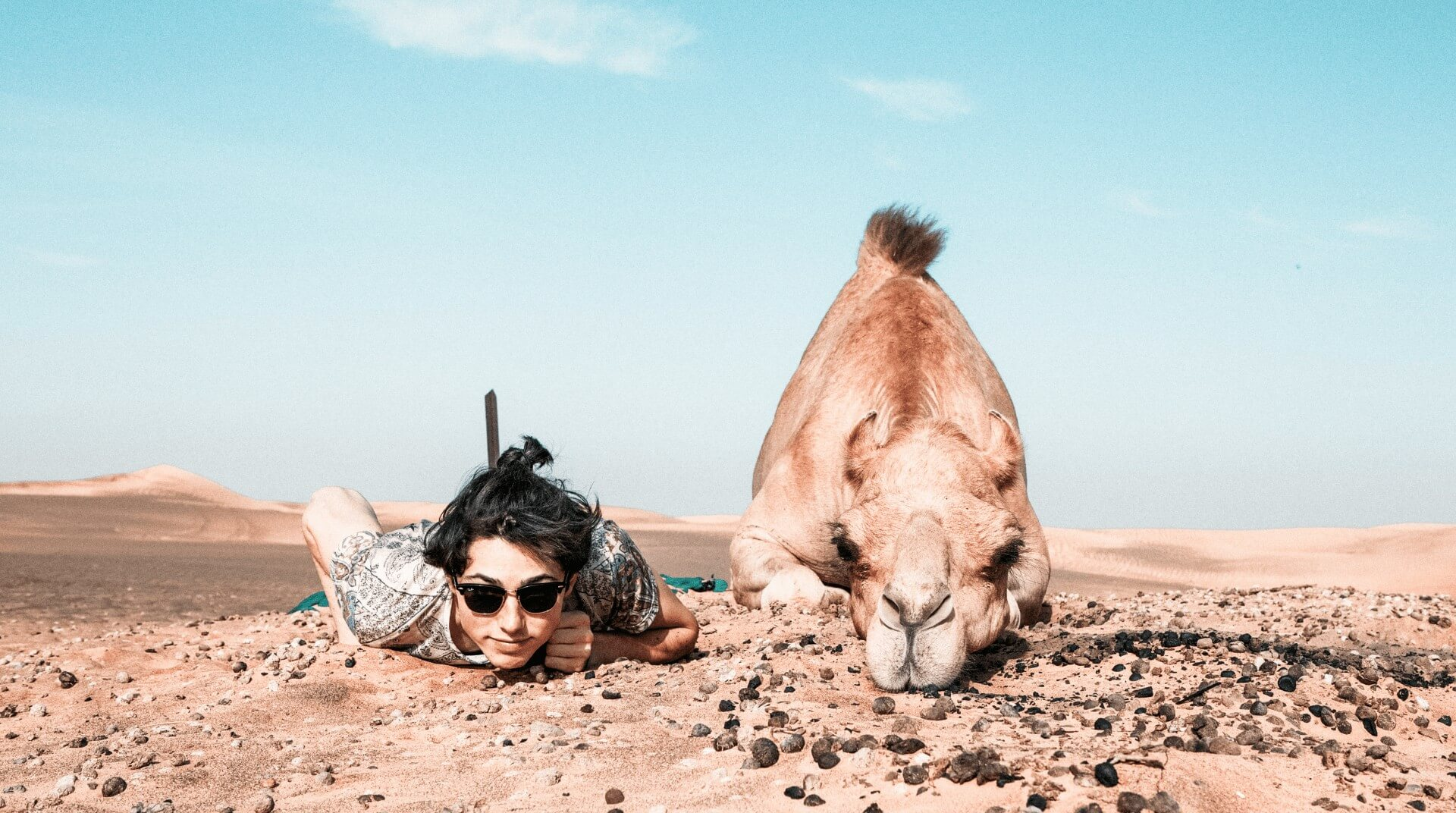 I Ask the Camel to Ride Me